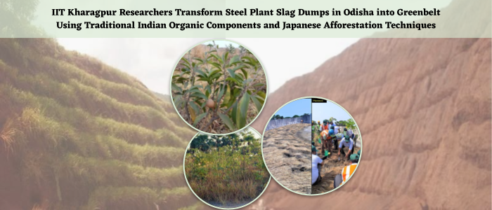 Turning Steel Slug Dump to Greenery Hub, IIT Kharagpur's Transformative Work at Odisha