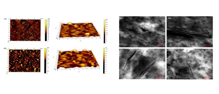 The Beauty of Graphene nanoplatelets improving Tyre Performance properties