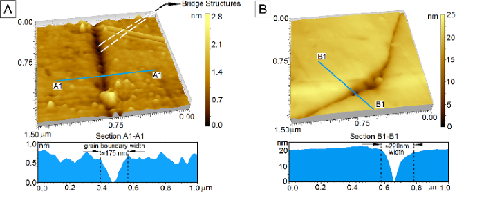 A new approach for direct visualization of nanoscale waterways in rocks using the Atomic Force Microscope and its consequence on water percolation